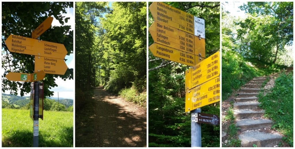 The hiking route to Belchenflue