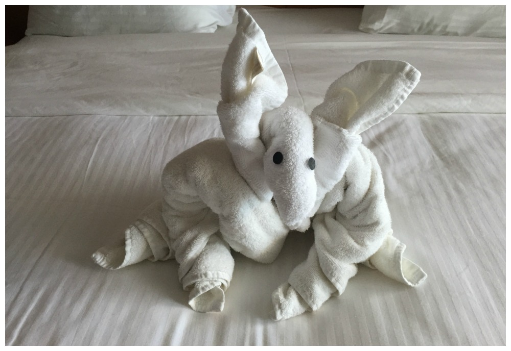 Todays towel animal creation on Carnival Legend